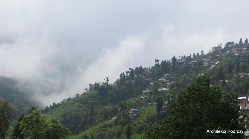 Darjeeling we mgle