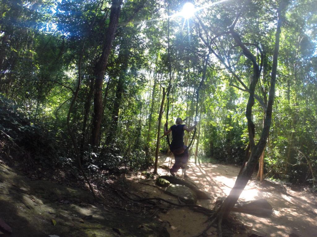 Wyjazd do Kambodży dżungla