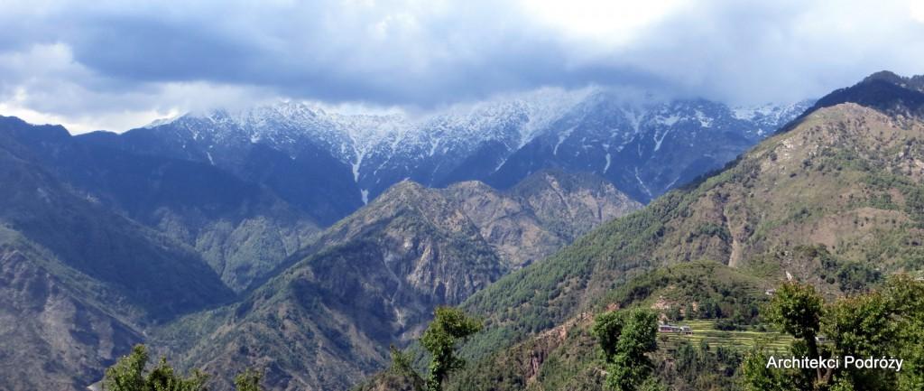 Indie - Dharamsala - góry