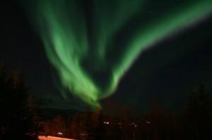 Zorza Polarna w Norwegii w Salangen