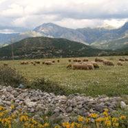 Albania – Podróżnicze ciekawostki