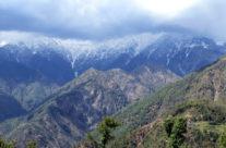 Dharamsala, góry