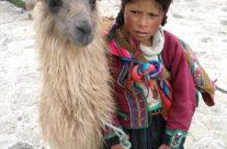 Machu Picchu – Cuzco