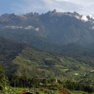 Borneo – królestwo orangutanów