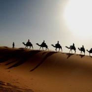 Maroko – góry Atlasu i piaski Sahary