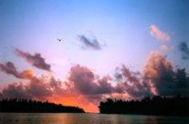 Polinezja Francuska – Mooreamotu