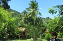 Tajlandia – resort na Ko Phangan