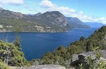 Wyjazd do Patagonii – Mirador bandurrias