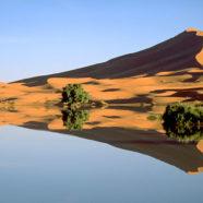 Zwiedzanie Maroka: Merzouga – jezioro i wydmy na Saharze