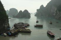 Zwiedzanie Wietnamu – łodzie na Zatoce Halong