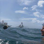Snorkeling z rekinami wielorybimi w Donsolu, czyli karkołomna pogoń