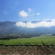 Malawi – Afryka dla początkujących